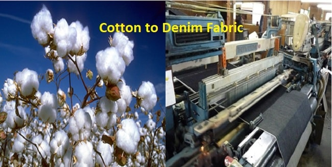 Cotton fiber used for denim or jeans