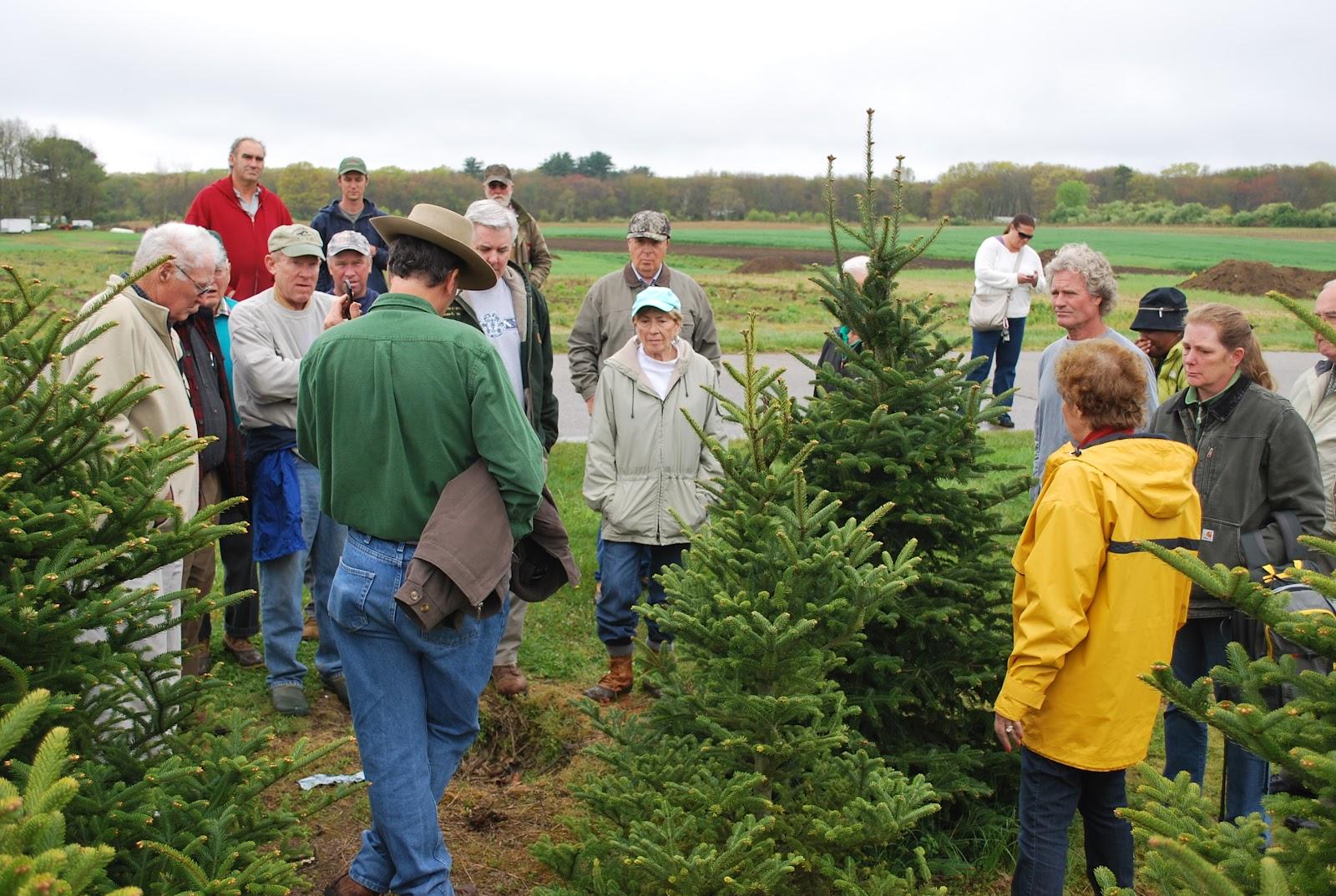 RI Christmas Tree Growers