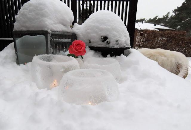 Vinterpoesi i hagen - Nærbilde av islykter på et snødekket bord IMG_0338 (2)-min