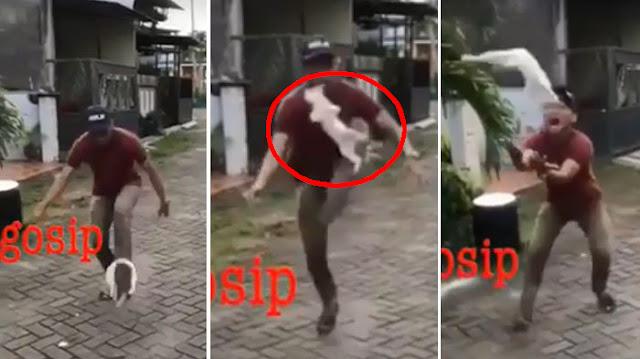 Seperti Kesetanan, Pemuda ini Hajar Anak Kucing Layaknya Bola Sepak, Lihat Videonya