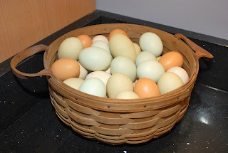 pretty colored eggs in basket