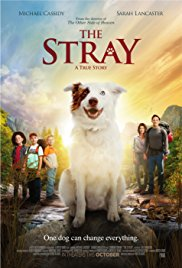 Watch The Stray Online Free 2017 Putlocker