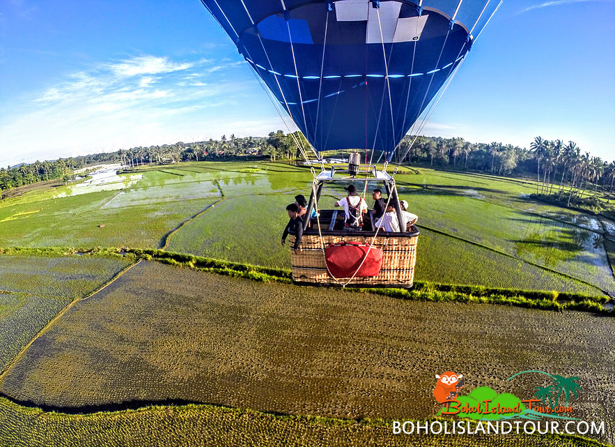 hot air balloon rides in Chocolate hills