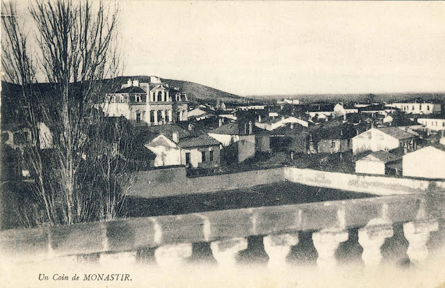 View of part of Bitola, with the Metropolitan Residence in background, 1917.