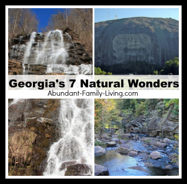 https://www.abundant-family-living.com/2009/06/georgias-7-natural-wonders.html#.W9ZMdOJRfIU