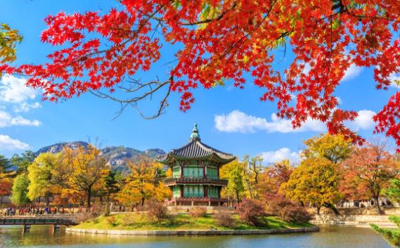 Liburan ke Korea atau ke Jepang?