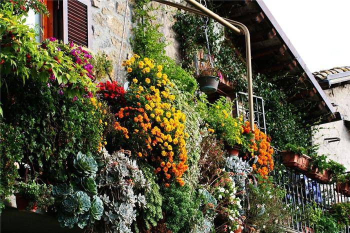 Beautiful Balcony Gardens Kerala Home Design And Floor Plans
