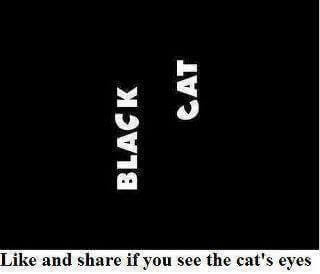 Picture Puzzle to find Cat's Eyes