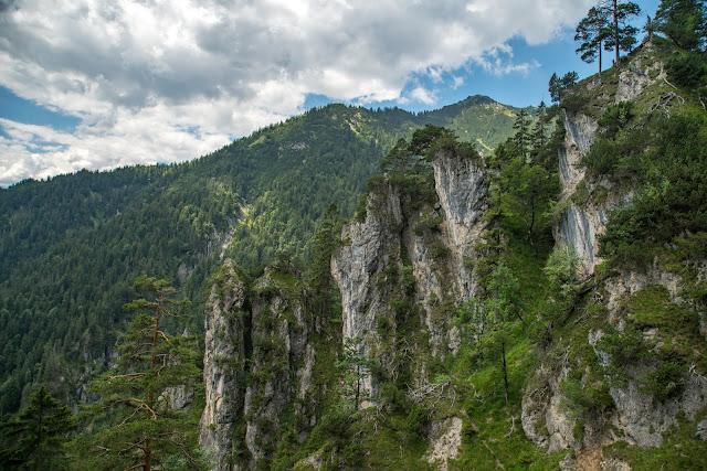 Wanderung zur Stepbergalm  Wandern Garmisch-Partenkirchen  Stepbergtour Alpentestival-Garmisch-Partenkirchen 07