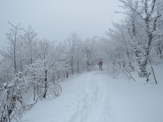Przełęcz między Małą i Wielką Rawką.