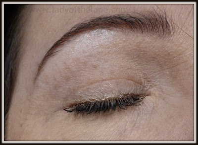 Wow! Brows Eyebrow Powder