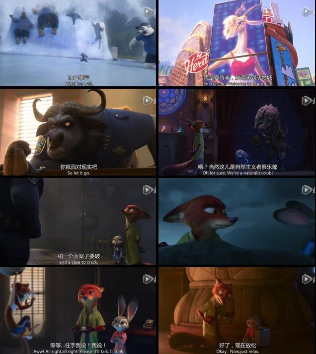 Zootopia 2016 English HC HDRip 800MB ESubs