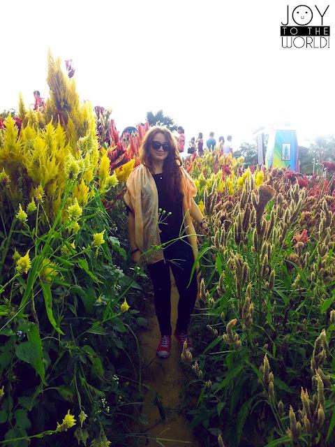 Tourist Spot Cebu