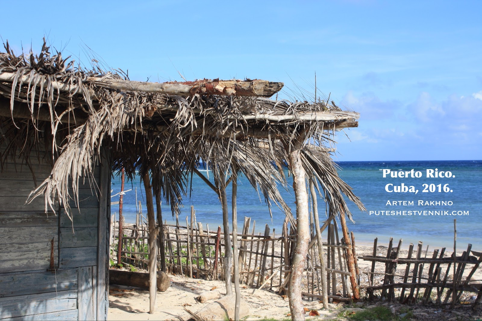 Навес из пальмовых листьев