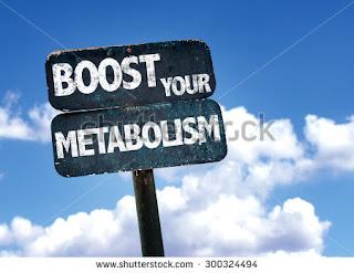 Permalink ke Pengertian Metabolisme Lipid Dan Prosesnya