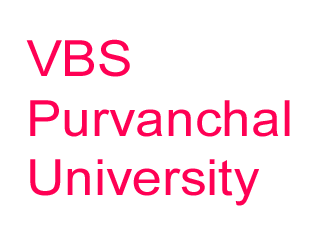 vbs-pu-results