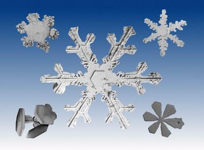 الثلج كما لم تراه من قبل التصميم المعجز لبلورات الثلج من تحت الميكروسكوب ثقف نفسك
