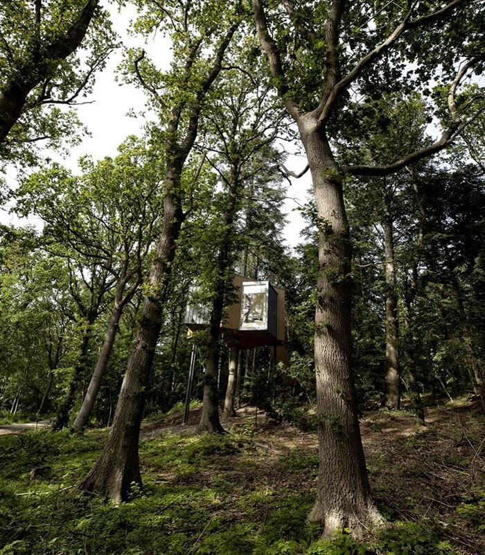 11-Living-in-the-woods-Architecture-Treetop-Hotel-Tiny-House-www-designstack-co
