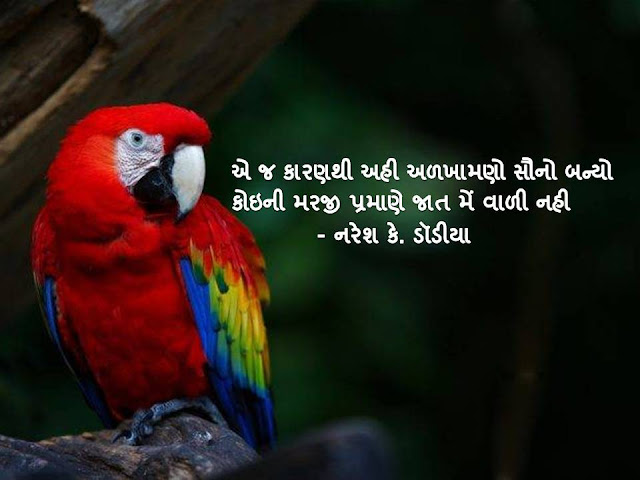 ए ज कारणथी अही अळखामणो सौनो बन्यो Gujarati Sher By Naresh K. Dodia