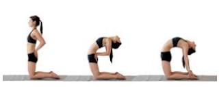 Gerakan Yoga Untuk Menurunkan Berat Badan