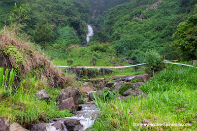 Sungai kecil yang dilewati menuju Curug Muncar Petungkriyono