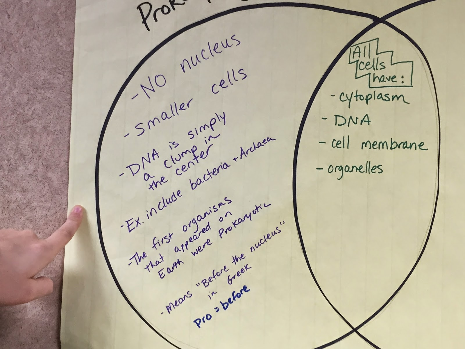 class 3 article video related to certain cell parts answer any questions related to test slide show from class with organelles and functions  [ 1600 x 1200 Pixel ]