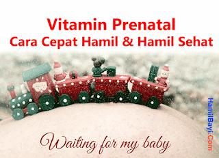 Vitamin Prenatal: Cara Agar Cepat Hamil dan Hamil Sehat