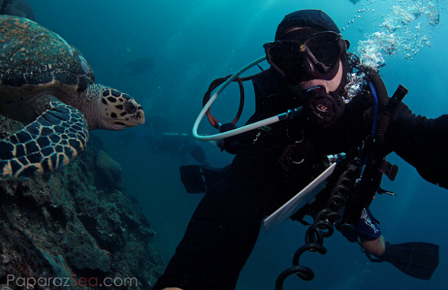 Jun V Lao, Scuba Diving, Underwater Photography, Thailand