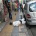 ΕΙΚΟΝΕΣ ΣΟΚ στους δρόμους της Αθήνας: Όταν η ανθρώπινη αξιοπρέπεια έχει πιάσει πάτο!