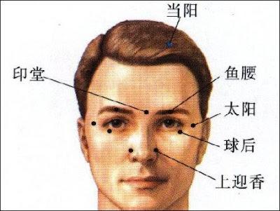 上迎香穴位 | 上迎香穴痛位置 - 穴道按摩經絡圖解 | Source:zhongyibaike.com