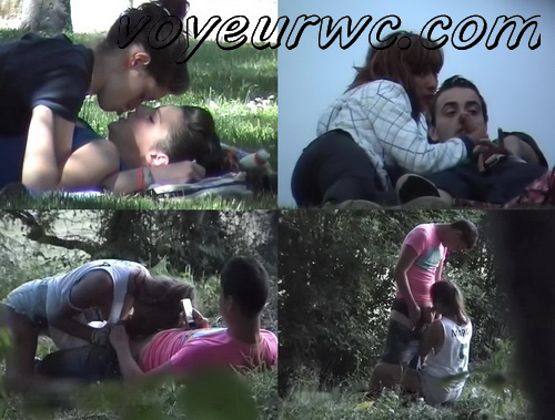 Day Watching 19-20 (Voyeur sex in public place young lovers romantic spot hidden camera)