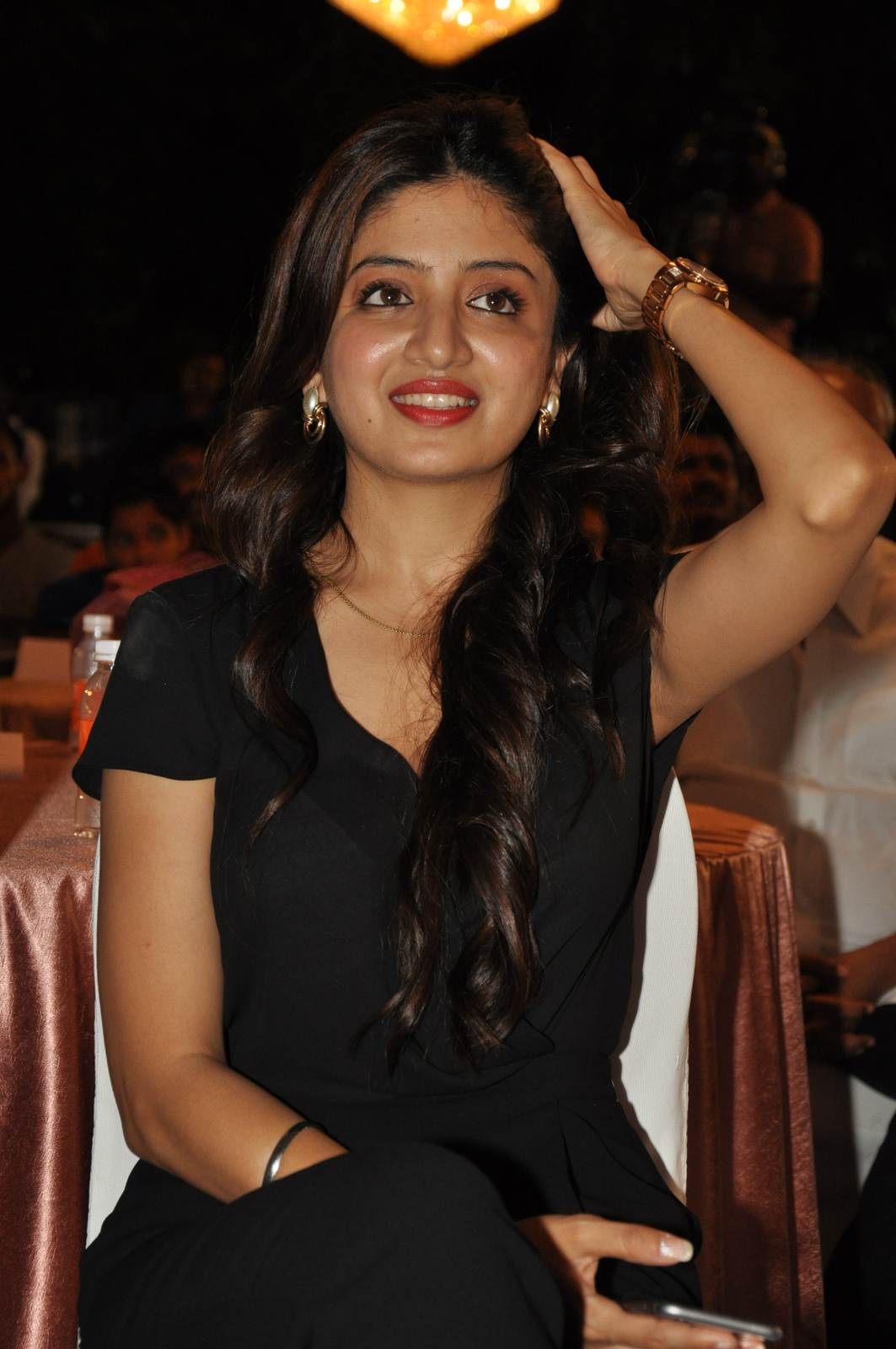 Telugu Actress Poonam Kaur, Poonam Kaur hot Pics in black Dress from 365 Days Movie Audio Launch