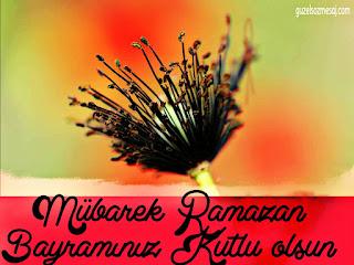 resimli ramazan bayramı mesajları