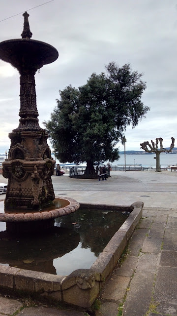 Vigo Ciudad Olívica
