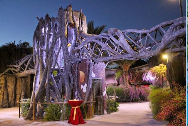 Wedding Venues In Jacksonville Fl Jacksonville Zoo & Gardens