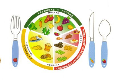 Documento plato del buen comer