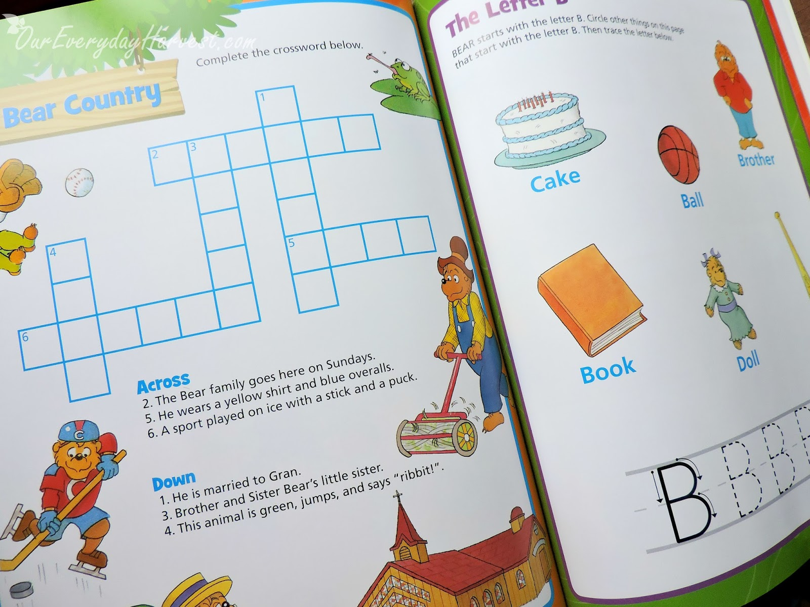 The Berenstain Bears Bear Country Fun Sticker And Activity