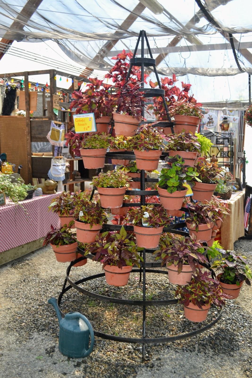 The Outlaw Gardener: Garden Hopping to Garden Shopping: Covington ...