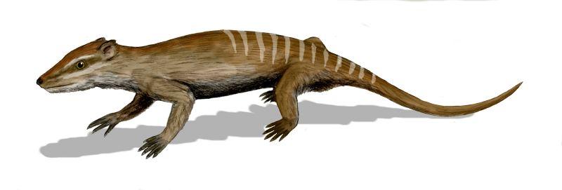 Radio hiili ajoitus dating on hyödyllinen dating dinosaurus fossiilejaGrand Theft Auto San Andreas dating opas