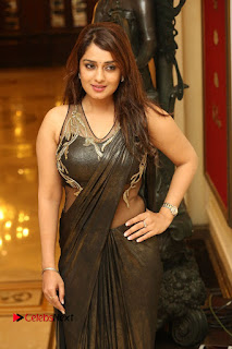 Actress Nikitha Pictures in Saree at Apartment Movie Audio Launch  0046