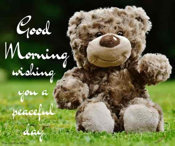 stunning good morning image