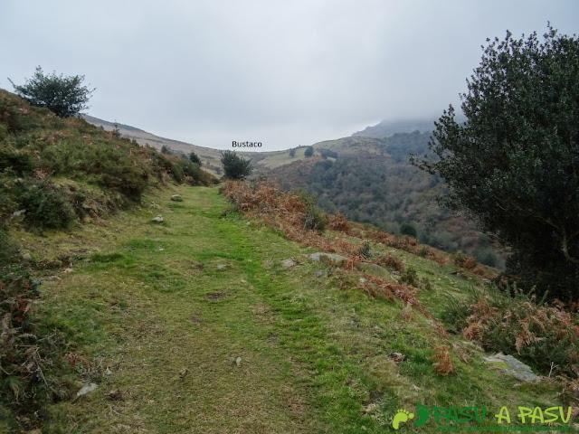 Ruta al Pico Gobia y La Forquita: De la Biescona a Bustaco