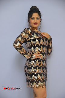 Actress Madhavi Latha Pictures in Short Dress at On Mona Birthday Premiere 0023