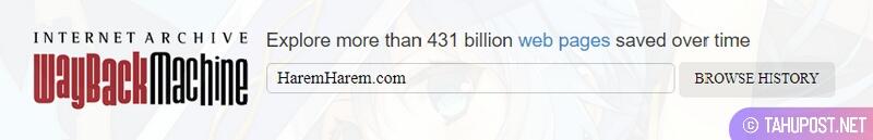 Wayback Machine untuk Cek Expired Domain