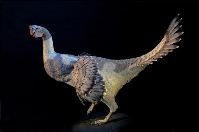 Científicos revelan cómo se veían los dinosaurios en realidad