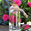 6 metode untuk menghilangkan jerawat dengan bahan alami