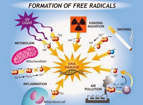 Radikal Bebas Merusak DNA Tubuh dan Penyebabnya