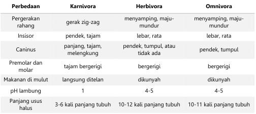 Mengenal Lebih Dekat Sistem Digesti Pada Mamalia Ruminansia