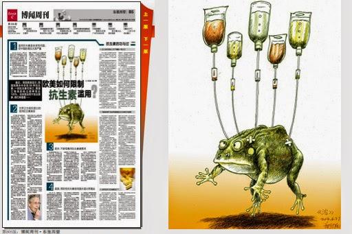 """(上图)《羊城晚报》B5版插图""""蛤蟆输液吊瓶""""照, 2014年8月30日"""