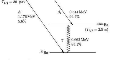 Conceptual Physics: Decay Level Scheme of Cs-137